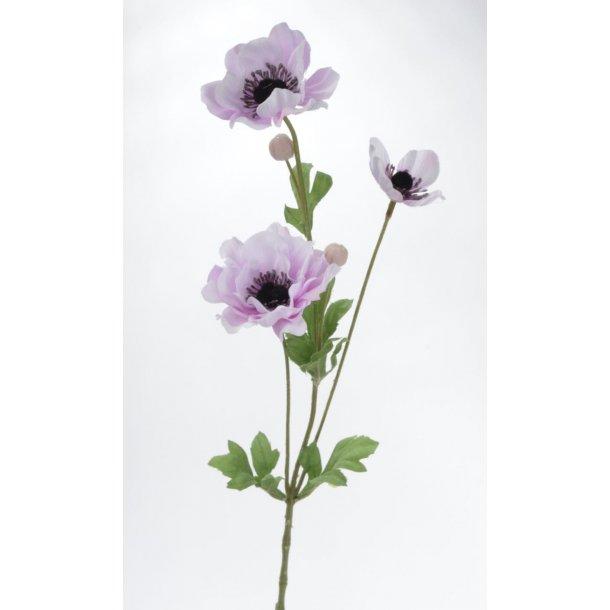Anemonebusk lilla