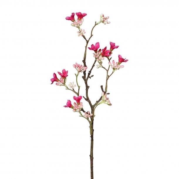 Kirsebær gren pink