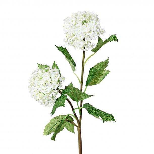 Gren m/hvide blomster