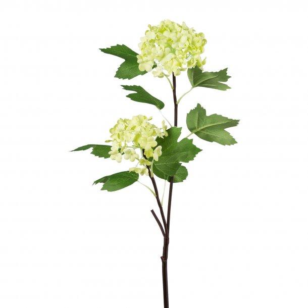 Gren m/lime blomster