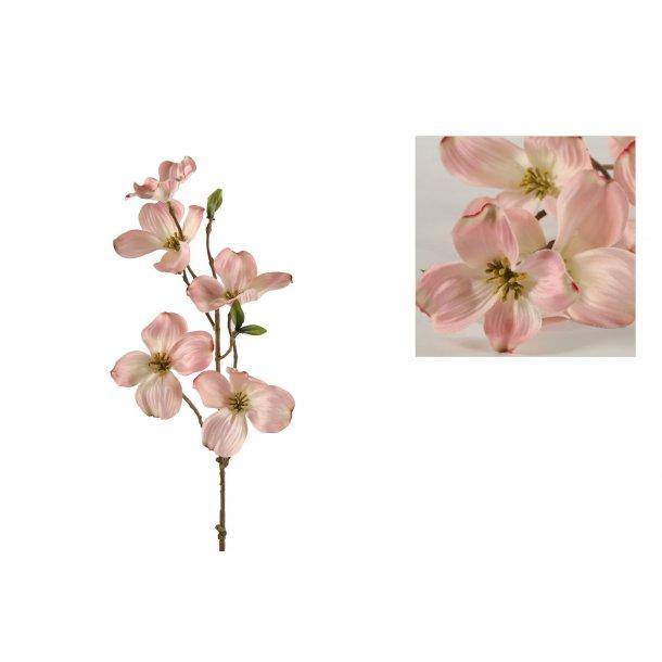 Gren med rosa blomster