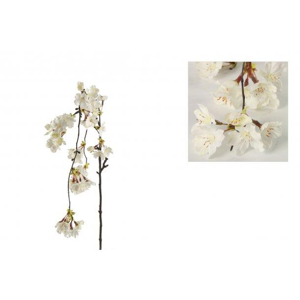 Kirsebærgren hvid hænge