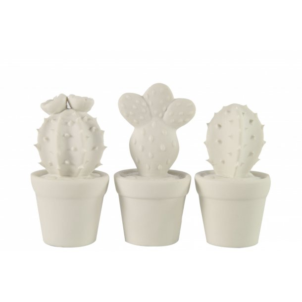 Hvide keramik kaktuser