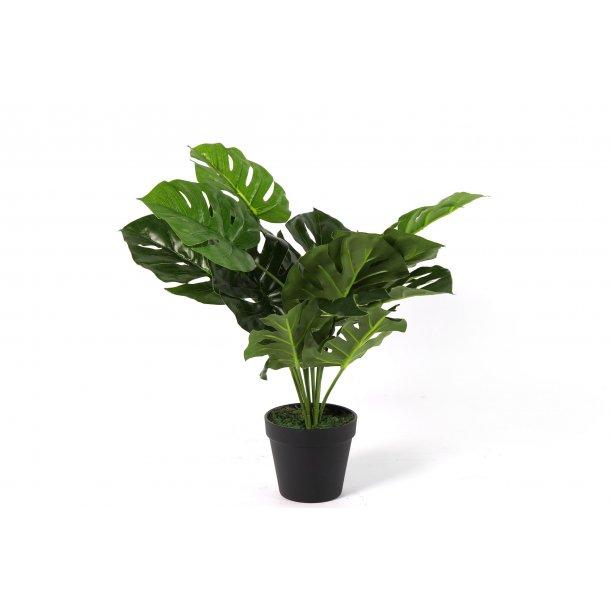 Strålende Monstera plante i potte H 45 cm - Kunstige Blomster - MAGGIES.DK HX-14